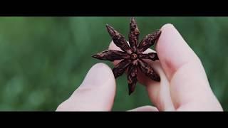 """Шоколад молочный """"MANIFEST"""" на кокосовом сахаре, 70 г от компании VegansBy - магазин эко товаров - видео"""