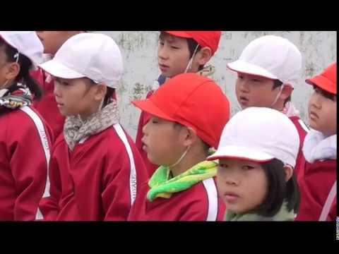三宅小学校の白ネギ栽培体験学習2019