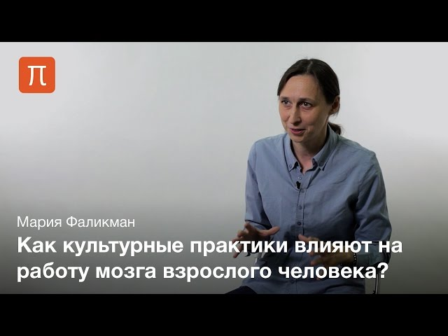 Культурная нейронаука - Мария Фаликман