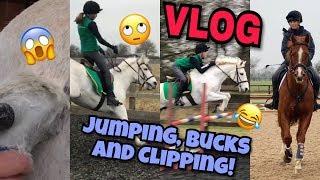 Jumping, Bucks and Clipping // VLOG #6