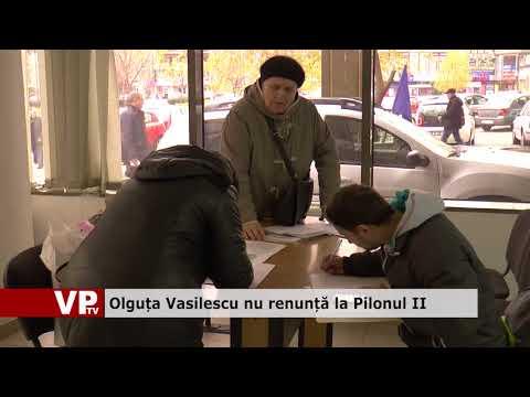 Olguța Vasilescu nu renunță la Pilonul II
