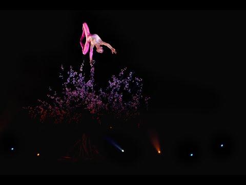 Cirque Phénix : Gaïa - Bande-annonce