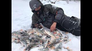 Рыбалка в низовьях оби осень 2020