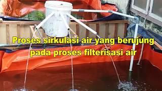 Kolam Ikan Nila Dengan Filterisasi Yang Lancar