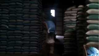 How A Rice Mill Works – Start to Finish