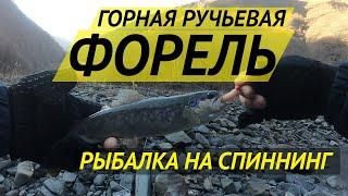 Рыбалка в декабре за границей