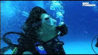 Nuestros Mares - Tiburón toro