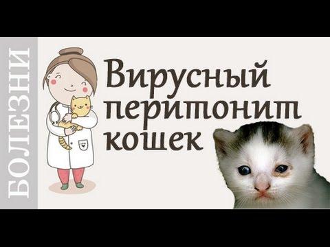 Одесса помощь больным гепатитом