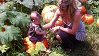 preview picture of video 'Kula Country Farms Maui Pumpkin Patch'
