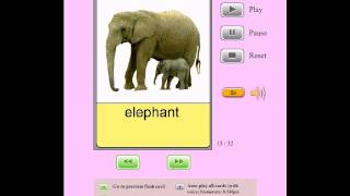 Audio Flashcards for Kids - Animals - Mammals
