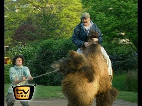Raab in Gefahr - im Kölner Zoo