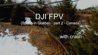Spring in Quebec (part 2) with... crash | Cinematic | DJI FPV (4k, 60 fps, ND 4, color grading)