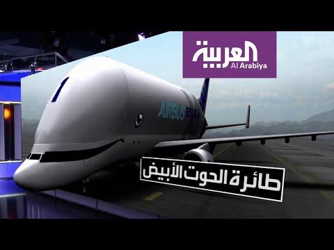 العرب اليوم - شاهد: طائرة إيرباص