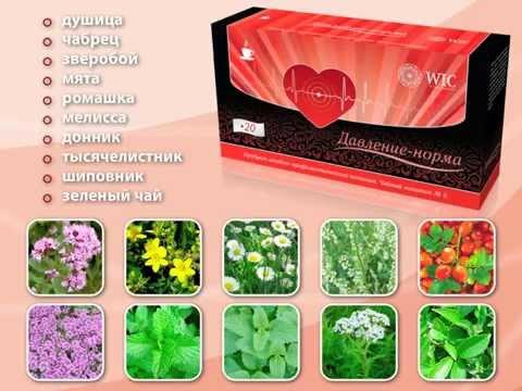 Какие травы помогаю от гипертонии