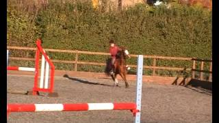 preview picture of video 'Saffi and Springers Wizard lesson with Ben Greenwood 18 11 12'