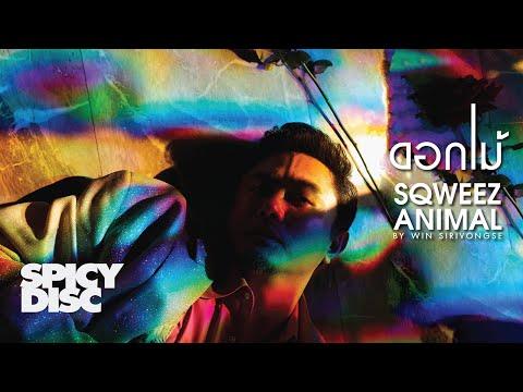 "Lyrics""ดอกไม้ (Dauk Mai)"" by Sqweez Animal"