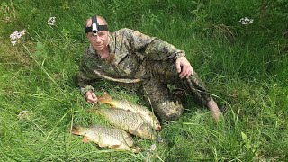 Рыбалка на сазана в Астрахани. Ловля сазана на жмых
