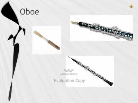 Instruments of the Orchestra - Woodwind.asf