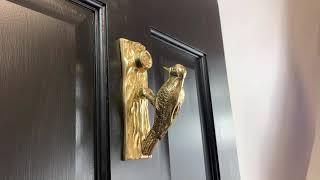 Polished Brass Woodpecker Door Knocker (DK113/PBL)