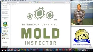 Tips on Performing a Mold Inspection