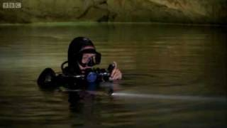 Cave diving reveals secret world  - Earth - The Power of the Planet - BBC