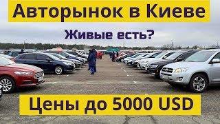 Авторынок в Киеве. Цены на АВТО до 5000 $ | Февраль 2020 | Автобазар