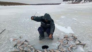 Календарь рыболова в киргизии на 2020 февраль