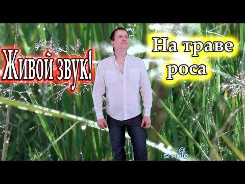 На траве роса