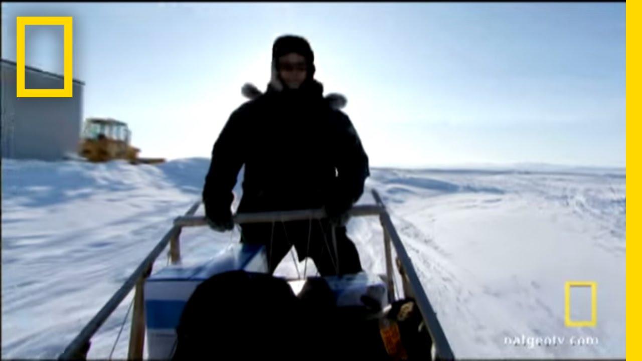 Alaskan Fugitive | National Geographic thumbnail
