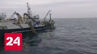 Рыболовный сейнер траулер проекта 13303 керчье