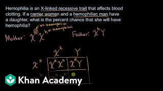 Example Punnet Square For Sex-linked Recessive Trait | High School Biology | Khan Academy