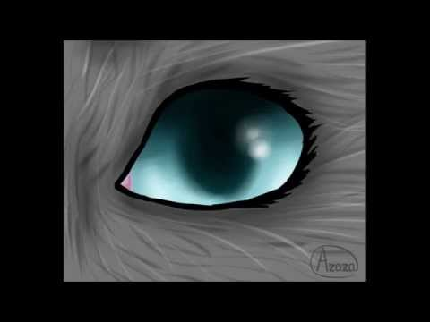 Cat Eye Animation Test