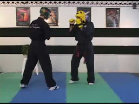 Sport Karate; Sparring and Your Hand ...
