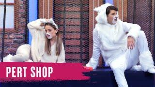 Pert Shop (95.Bölüm) - Çok Güzel Hareketler 2