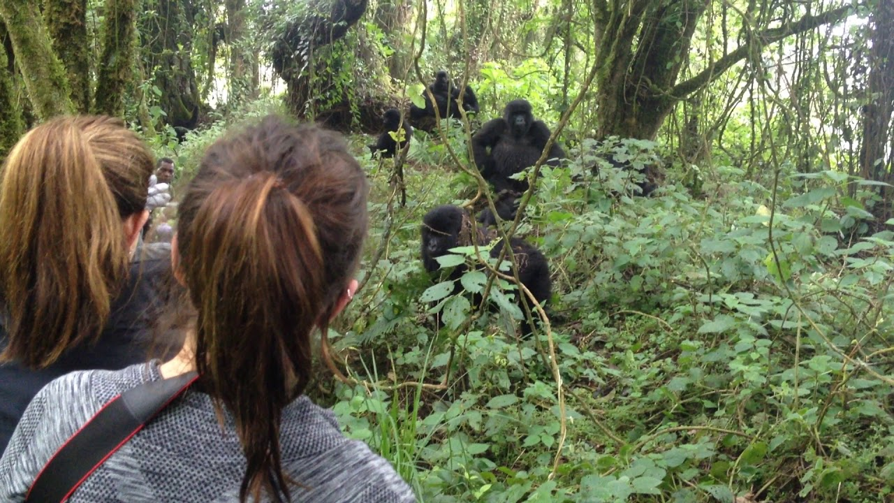 Virunga Community Programs
