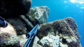 Spearfishing Croatia Mix 1