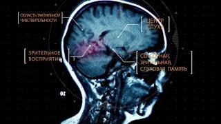 Тайны мозга. Фильм 3