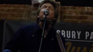 Steve Forbert & Bobby Bandiera - Lost Harmonica/Midnight Rambler/You Cannot Win If You Do Not Play