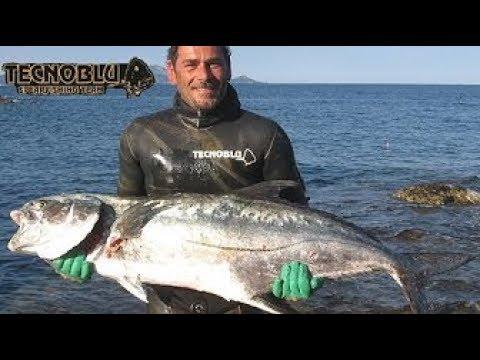 Video professionale su pesca