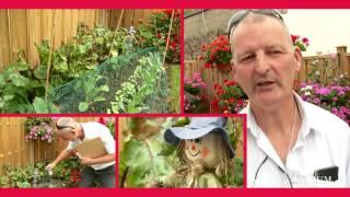Garden Competition 2015 Judging