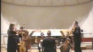 preview picture of video 'J. S. Bach: Brandenburgisches Konzert Nr. 6'