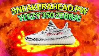 Sneakerahead Yeezy 350 Zebras Unboxing and Review