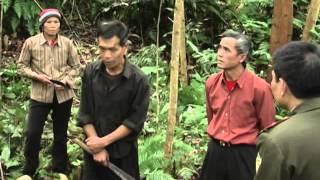 preview picture of video 'PS Ha giang su dung hieu qua quy bao ve va phat trien rung 10p46'