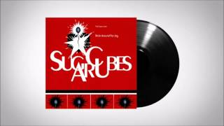 The Sugarcubes - Hetero Scum