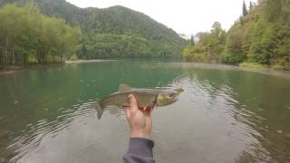 Рыбалка на озере рица в абхазии