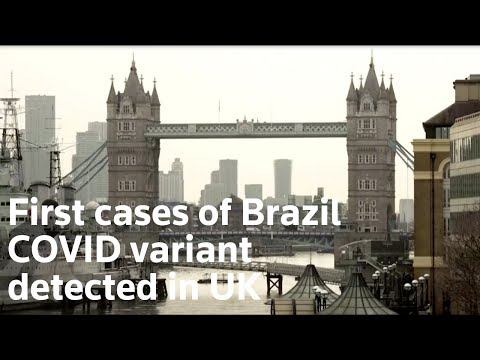 First cases of Brazil covid variant detected in UK