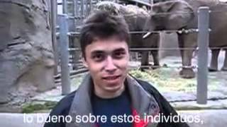 "Jawed's ""Me at the zoo"" in Spanish"