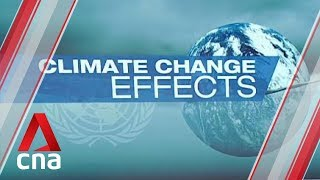 Countries must brace for bigger storms due to climate change: UN report