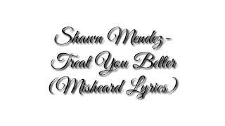 SHAWN MENDEZ TREAT YOU BETTER(Misheard Lyrics)