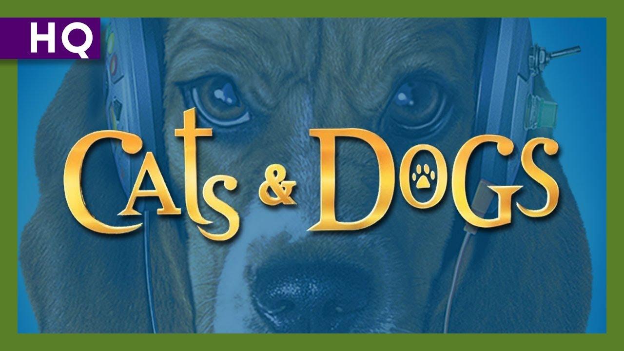 Trailer för Som Hund & Katt